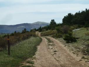"""La """"marque amie"""" du GR de Pays du Tour de la Montagne de Lure."""